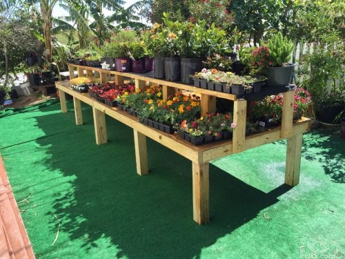 Earth Creations Landscaping Nursery